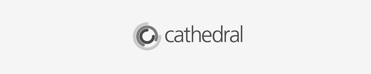 CATHEDRAL GROUP PLC