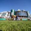 Picture of Aintree Racecourse