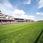 Picture of Haydock Park Racecourse