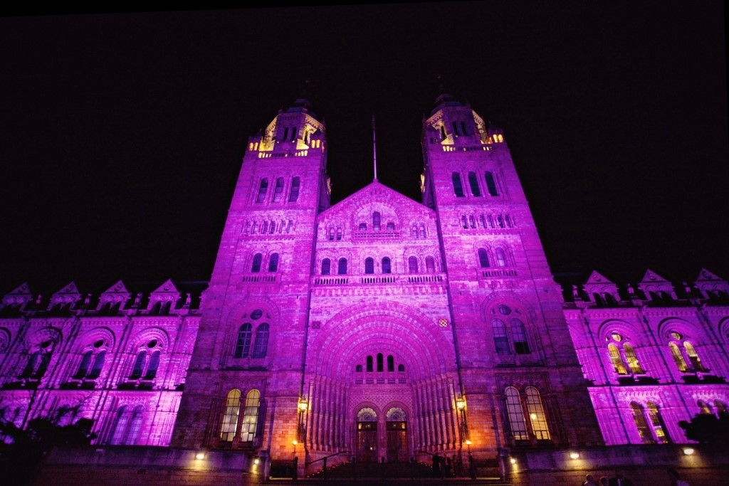 Picture of Natural History Museum