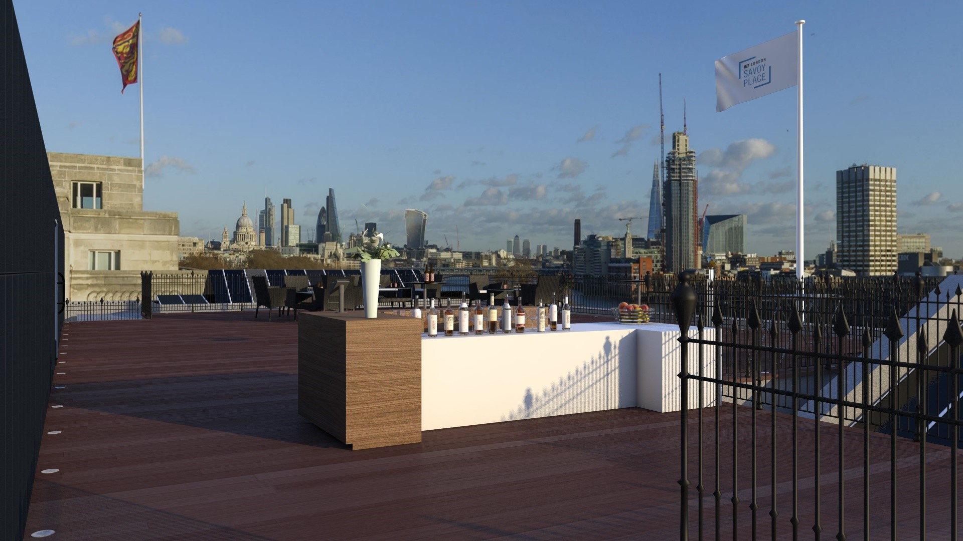 Johnson Roof Terrace